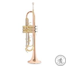 Труба Roy Benson-TR-202G