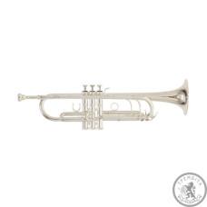 Труба RB701083 Bb TR-402S