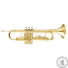 Труба пікколо Сі бемоль MAXTONE TTC30L (TTC1C)