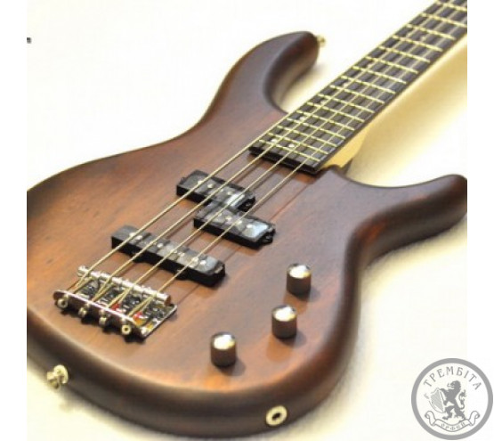 Бас-гітара CORT ACTION WS