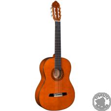 Классическая Гитара VALENCIA CG180