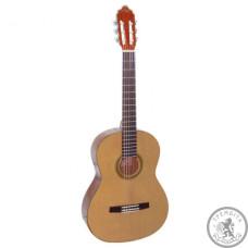Класична Гітара  VALENCIA CG30R+