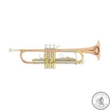 Труба Roy Benson TR-202G