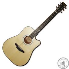 Гітара акустична Premiere PD140C