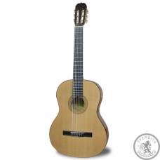 Классическая Гитара MAXTONE CGC3906