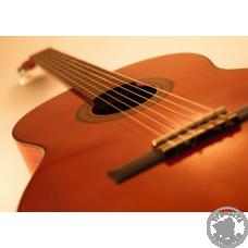 Гітара, класична та акустична, різновиди та підвиди, можливості та особливості