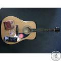 Гітарий комплект акустичний  FENDER FA-115 DREADNOUGHT