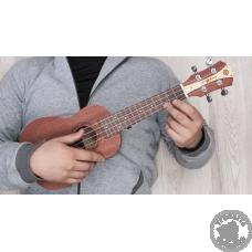Як вибрати укулеле – всі секрети екзотичної гітари