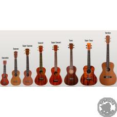 Як навчитися грати на укулеле?