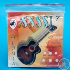 Струни для Акустичних Гітар SOLOMIA