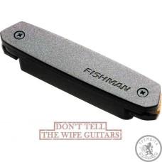 Магнітний звукознімач для акустичної гітари Fishman PRO-NEO-D01 Neo-D